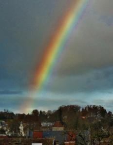 Dec. 5 2011 029